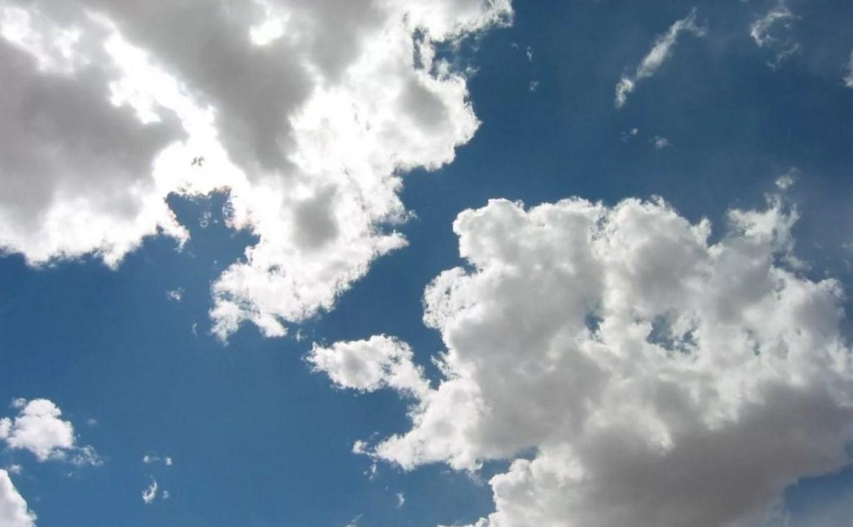 Погода в Туле 31 августа: сухо, облачно и прохладно