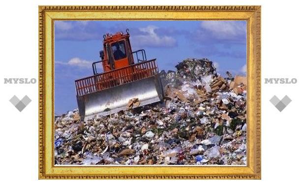 Главы муниципалитетов в Тульской области наказаны за мусор