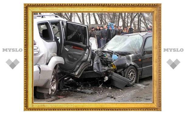 В 2011 году на пешеходных переходах Тульской области погибли 17 человек