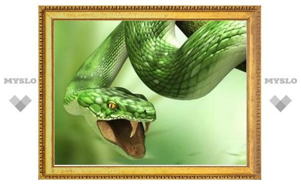 В Туле пройдет День змей