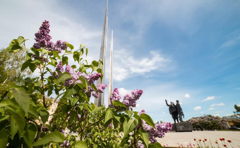 Погода в Туле 23 июня: ясно, жарко и без осадков