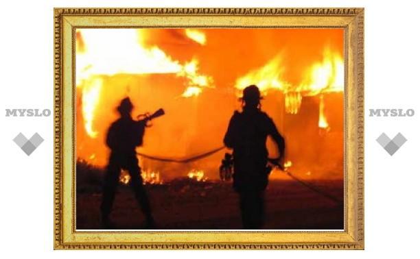 Жертвами пожара под Тулой стали 10 свиней и 120 птиц