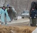 Россельхознадзор назвал возможные причины АЧС в «Лазаревском»