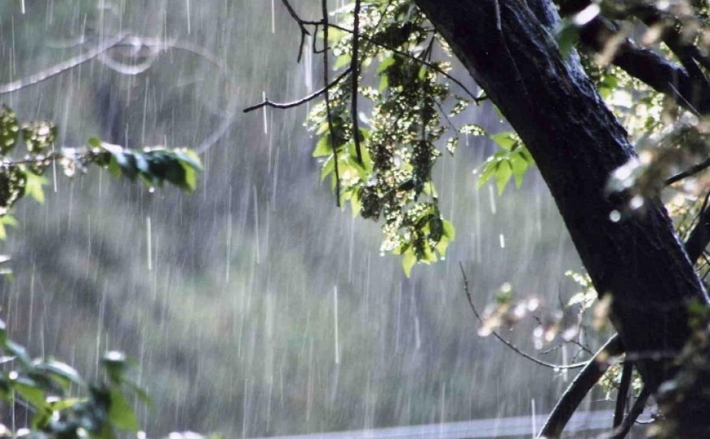 Погода в Туле 25 апреля: дождь с грозой и порывистый ветер