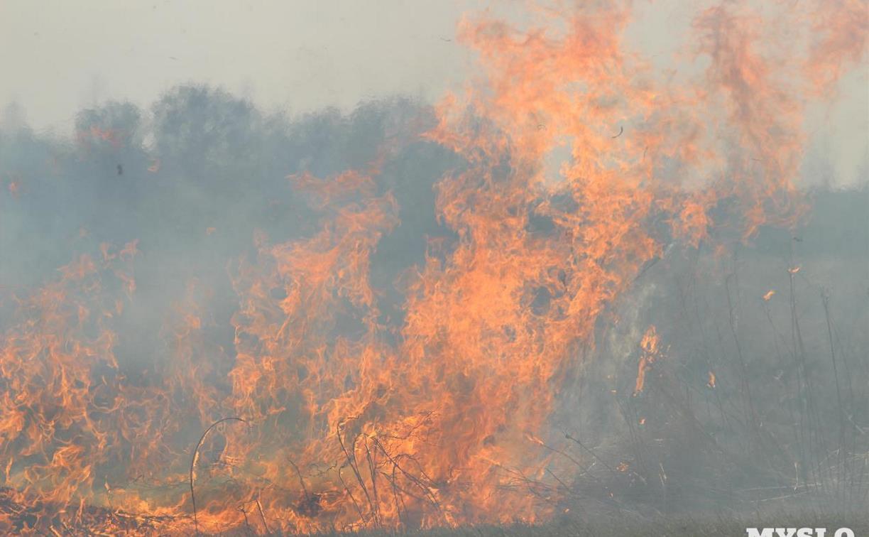 С 22 июля в Тульской области вводится особый противопожарный режим