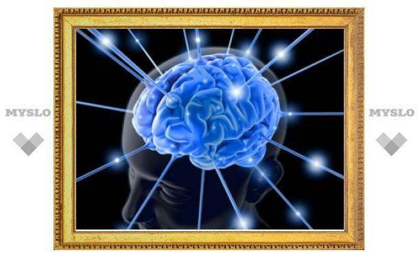 """Различные языки """"хранятся"""" в разных участках мозга"""