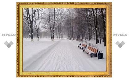 220 млн рублей потратят на реконструкцию Центрального парка