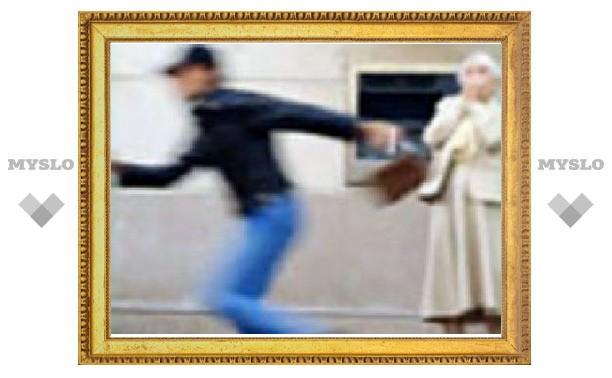 Тульский грабитель погорел на дамской сумочке