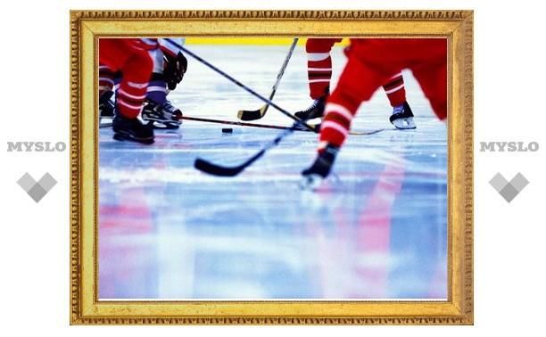 В Туле возродят игру в хоккей