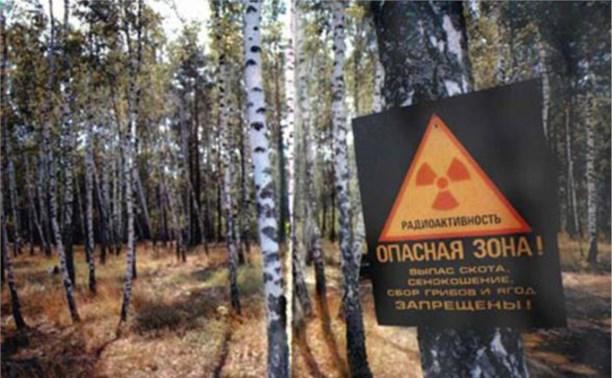 Правительство РФ хочет вдвое сократить чернобыльскую зону загрязнения