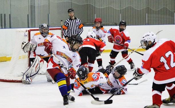 21 мая в Новомосковске откроется III международный детский хоккейный турнир