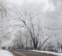 Погода в Туле 13 февраля: облачно, холодно, без осадков