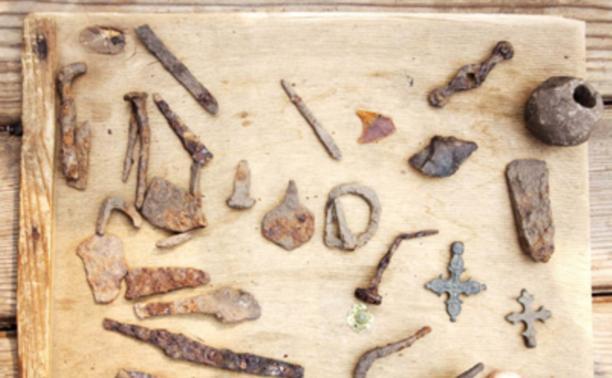Тульские археологи нашли новые артефакты Куликовской битвы