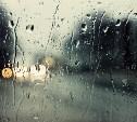 В Тульской области сохранится дождливая и ветреная погода