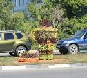 В Пролетарском районе появился цветочный самовар