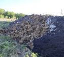 Незаконную свалку на берегу Тулицы спрятали под грудой земли