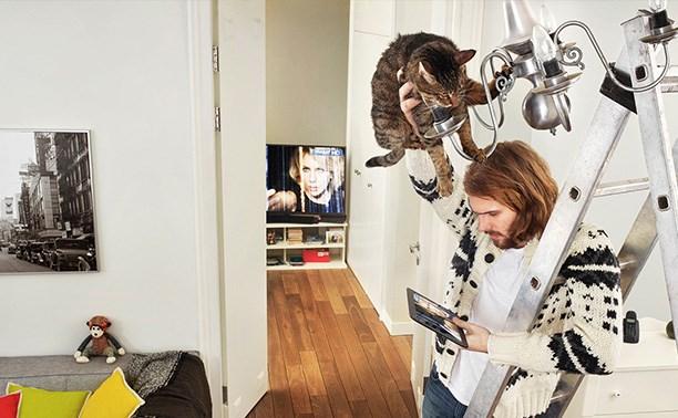 Все клиенты «Дом.ru» в Туле могут смотреть ТВ с мобильных устройств