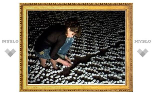 Российская художница победила в конкурсе галереи Саатчи