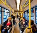 Что нужно знать пассажирам автобусов и маршруток: памятка от ГИБДД