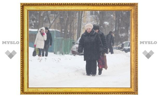 ГИБДД: В Тульской области прогнозируется снежный шторм