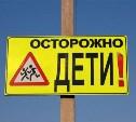 В Первомайском лишённый прав пьяный водитель сбил двоих детей