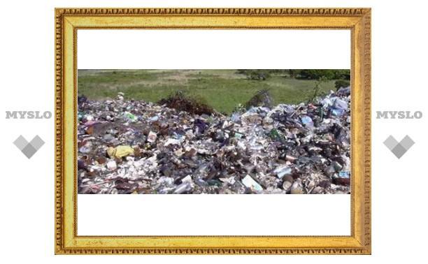 Под Тулой нашли свалку опасных отходов