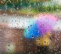 Погода в Туле 21 сентября: облачно, дождливо и ветрено