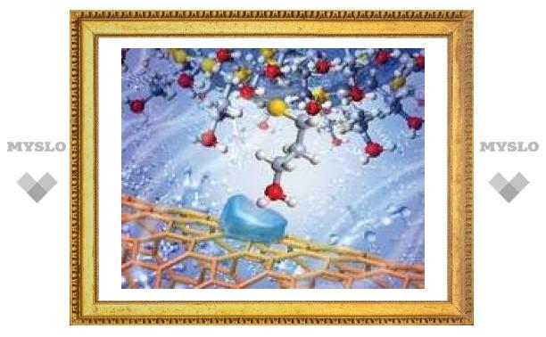 Изучено взаимодействие нанотрубок с органическими веществами