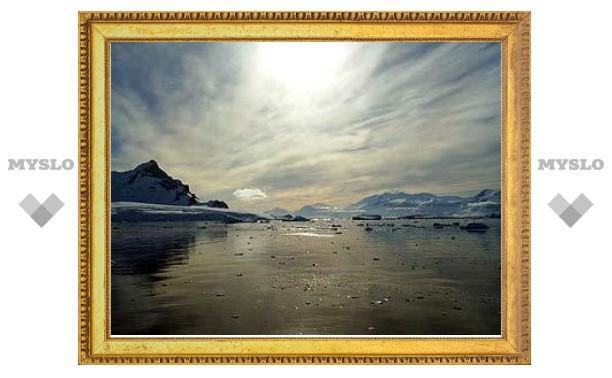 Площадь льдов Арктики снизилась до исторического минимума