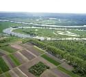 В Госдуме предложили изымать неиспользуемые земельные участки через три года