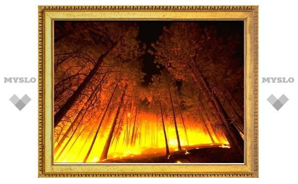 «Триумф» ответит за ущерб экологии