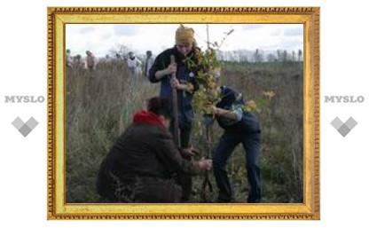 Тульские школьники посадили лес