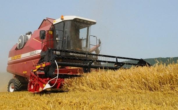 В Тульской области создадут сельскохозяйственный кластер