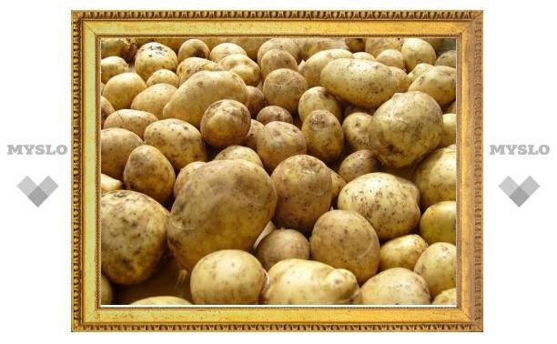 Два туляка пытались незаконно вывезти из Белоруссии фуру картофеля