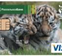 Тульский филиал Россельхозбанка выпустил более 36 000 платёжных карт