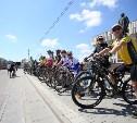 В Туле состоялся велопарад
