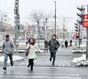 В Туле больше сотни пешеходов оштрафовали за нарушение ПДД
