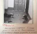 Задержали через 25 лет: волгоградский убийца подрабатывал в Туле таксистом