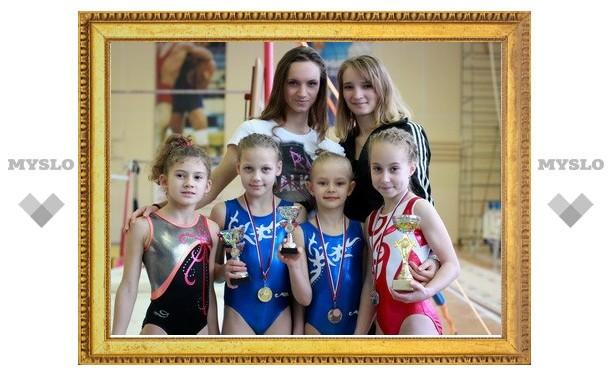 Тульские гимнастки отличились в Новомосковске