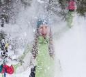 Синоптики рассказали о снегопадах в январе в Центральной России