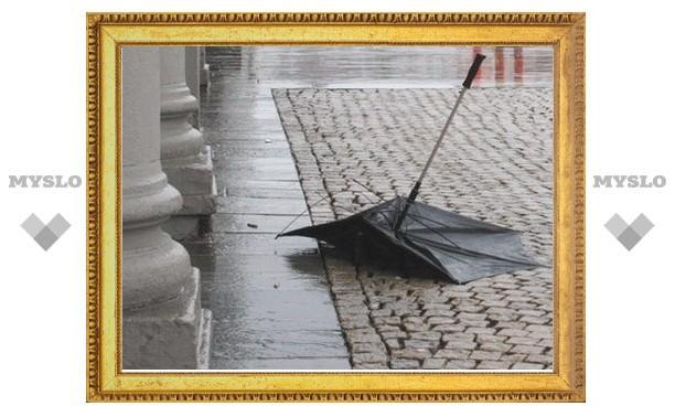 За убийство зонтом житель Тульской области получил 9 лет колонии