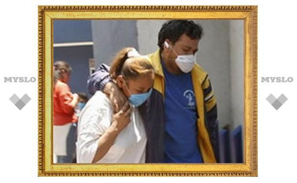 Вирус А/H1N1прилетел в Россию