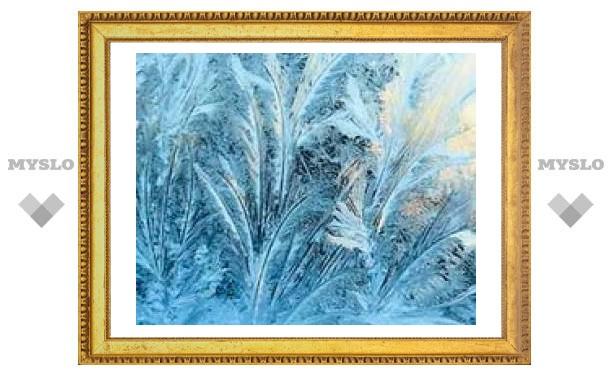 12 января: В Туле будут морозы