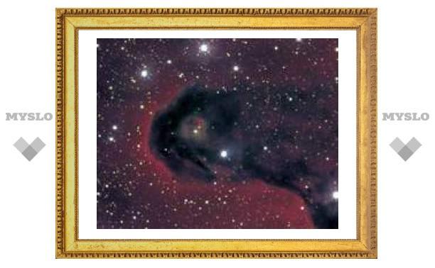 16 марта: международный день планетариев