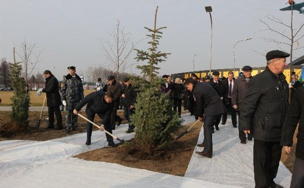 Возле мемориала «Защитникам неба Отечества» высадили еловую аллею