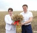 Владимир Груздев поздравил туляков с Днем работника сельского хозяйства