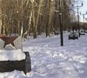 За вандализм в Центральном парке преступников ждет уголовное наказание