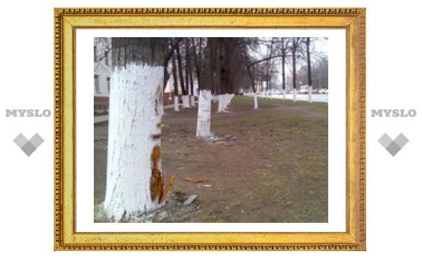 """В центре Тулы """"Лада"""" вылетела с дороги"""
