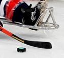 В Алексине определился чемпион страны по следж-хоккею