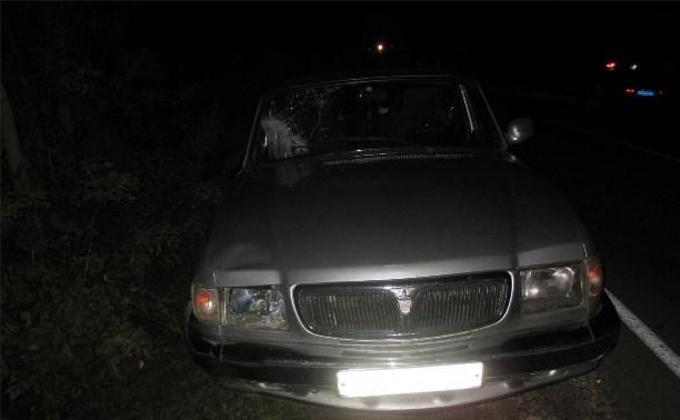 В Кимовском районе пешеход погиб под колесами «Волги»